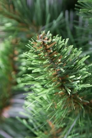 Iskusstvennaja elka so svetlo-zelenymi konchikami №5 (3)